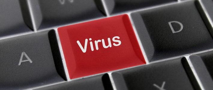 על וירוסים ואנטי וירוסים