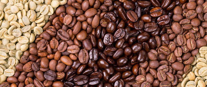 זני הקפה - איך הקפה מגיע לכוס שלנו