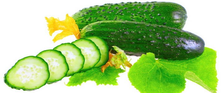 Cucumbers_resize