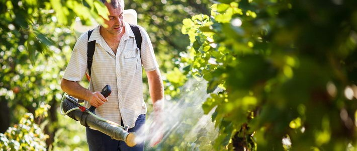 How to find a licensed certified exterminator